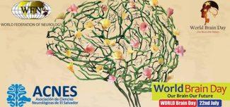 Día mundial del cerebro: 22 de Julio 2014
