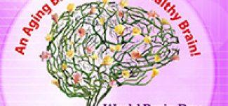 Día mundial del cerebro: 22 de Julio